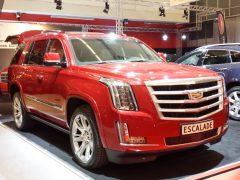 Cadillac-AutoRAI-4